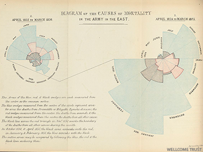 Florence Nightingale The Lady With The Data This Is Statistics