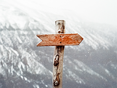 Signpost_Feature 240x180
